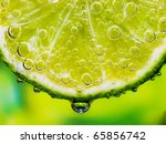 close up of a lemon slice with... | Shutterstock . vector #65856742