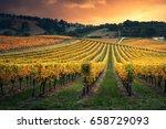 golden sunset over south... | Shutterstock . vector #658729093