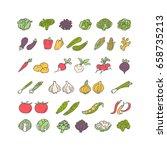 vegetables hand drawn icon set... | Shutterstock .eps vector #658735213
