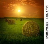 Field With Hay Bales At...