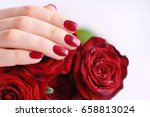 hands of a woman with red... | Shutterstock . vector #658813024