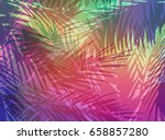 abstract tropical summer... | Shutterstock . vector #658857280