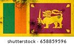 flag of sri lanka | Shutterstock . vector #658859596
