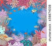 hand drawn underwater natural... | Shutterstock .eps vector #658874038