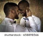 closeup of gay couple smiling... | Shutterstock . vector #658898566