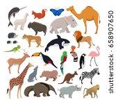 big vector set with wild cute... | Shutterstock .eps vector #658907650
