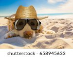 Stock photo golden retriever dog relaxing resting or sleeping at the beach for retirement or retired 658945633