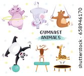 cute animals in sport gymnastic ... | Shutterstock .eps vector #658946170