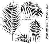 branch tropical palm areca...   Shutterstock .eps vector #659010160