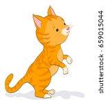 cute little cat standing. red...   Shutterstock .eps vector #659015044