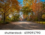 tokyo   november 22  fall...   Shutterstock . vector #659091790