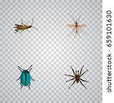 realistic bug  arachnid  locust ... | Shutterstock .eps vector #659101630