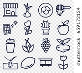 Natural Icons Set. Set Of 16...