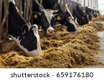 agriculture industry  farming... | Shutterstock . vector #659176180
