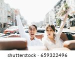 just married couple in the blue ... | Shutterstock . vector #659322496