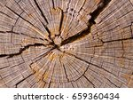 close up macro detail image of... | Shutterstock . vector #659360434