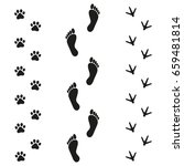 human dog and bird tracks on...   Shutterstock . vector #659481814