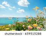 Flowers And Motor Yacht. Blue...