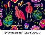 brazilian ibises in the... | Shutterstock .eps vector #659520430