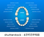 children mouth with tooth... | Shutterstock .eps vector #659559988