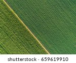 green abstract image of... | Shutterstock . vector #659619910
