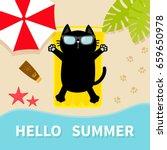 black cat sunbathing on the... | Shutterstock .eps vector #659650978