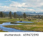 lower falls at yellowstone... | Shutterstock . vector #659672590