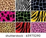 vector animal skin of different ... | Shutterstock .eps vector #65975290