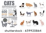 cat breeds infographic template ... | Shutterstock .eps vector #659920864