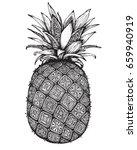 hand drawn graphic ornate... | Shutterstock .eps vector #659940919