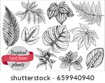 vector collection of hand drawn ... | Shutterstock .eps vector #659940940