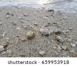 The Hermit Crabs  Small Stones...
