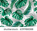 vector tropical palm leaves... | Shutterstock .eps vector #659988388