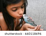 Stock photo young indian girl kid playing with blue pet love bird budgie on her hand kerala india love 660118696