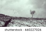 lonely tree in aged textured... | Shutterstock . vector #660227026