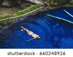 Woman Relaxing In Pool With...