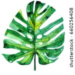 handpainted green watercolor... | Shutterstock . vector #660256408