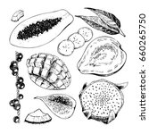 hand drawn exotic fruits.... | Shutterstock . vector #660265750