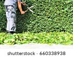 an image of trimming a hedge | Shutterstock . vector #660338938