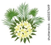 hand drawn tropical palm leaves ... | Shutterstock .eps vector #660357649