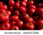 blurred full red tomato in the... | Shutterstock . vector #660437368