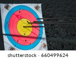 target hit in the center by... | Shutterstock . vector #660499624