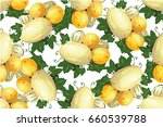 melon kinds with leaf seamless... | Shutterstock .eps vector #660539788