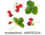 fresh and ripe strawberries... | Shutterstock . vector #660552214