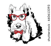 scottish terrier in a red... | Shutterstock .eps vector #660613393