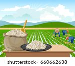 bag and a plate of rice on a... | Shutterstock .eps vector #660662638