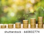 tree growing on one dollar... | Shutterstock . vector #660832774