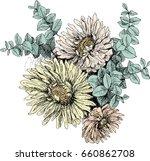 vintage botanical illustration... | Shutterstock .eps vector #660862708