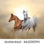 two purebred horses running in... | Shutterstock . vector #661030594