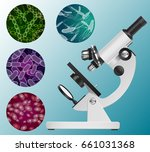 microscope and a set of images... | Shutterstock .eps vector #661031368